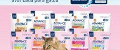 Muestras gratis de Affinity Advance Cat