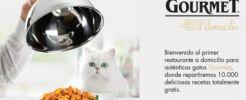 10.000 muestras gratuitas de comida para gatos Purina